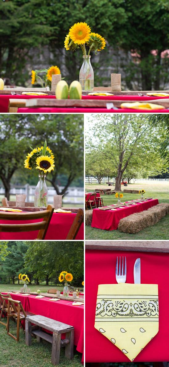 Festa de Aniversário na Fazenda